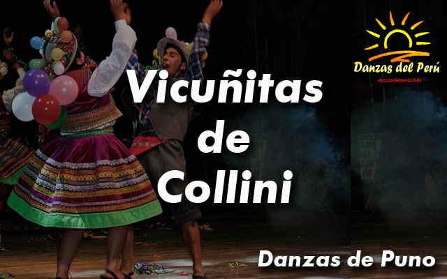 danza vicuñitas de collini puno