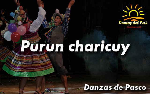 danza purun charicuy pasco