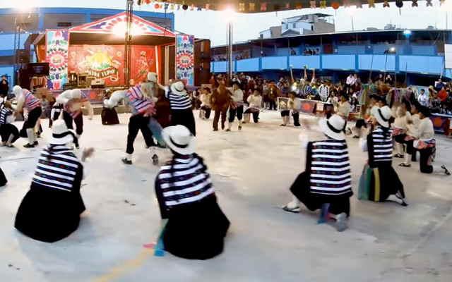 danza chaku vicuña