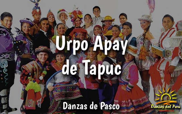 danza urpo apay de tapuc